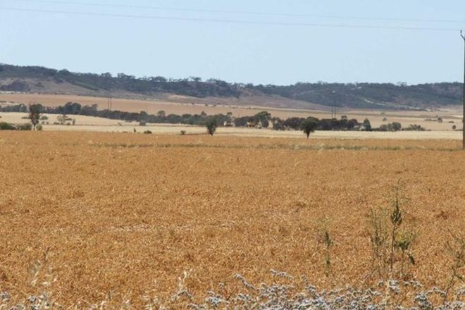 Picture of Section 370 National Highway, WARNERTOWN SA 5540
