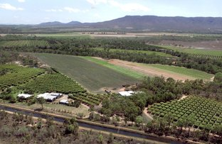 Picture of Mareeba QLD 4880