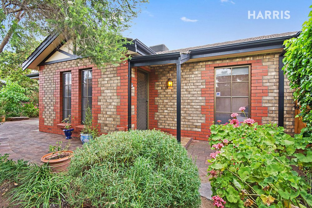 1/2 Dollman Street, Goodwood SA 5034, Image 0