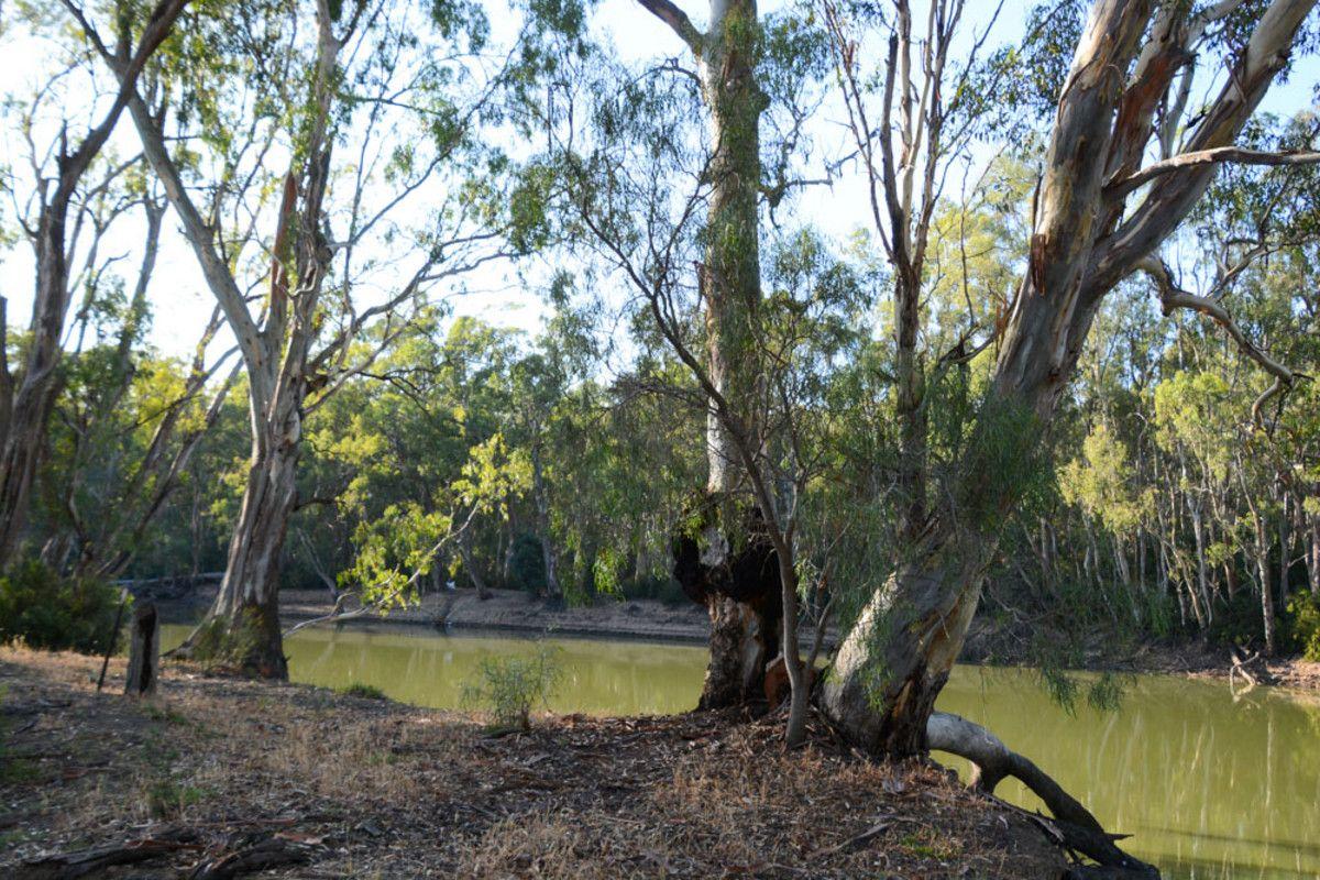 """River Estate"" Riverview Drive, Barham NSW 2732, Image 0"