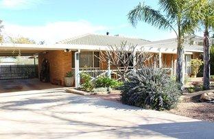 28 Green Street, Cobar NSW 2835