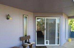 Picture of 29 Bostock Street, Winton QLD 4735