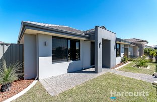 Picture of 99 Piazza Link, Alkimos WA 6038