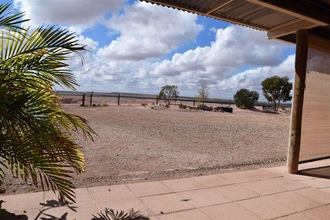 Picture of Lot 2035 Potch Gully, COOBER PEDY SA 5723