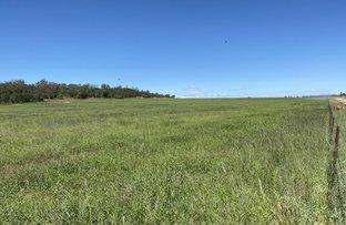 """Picture of """"South Glencoe"""" Glencoe road, Emerald Hill NSW 2380"""