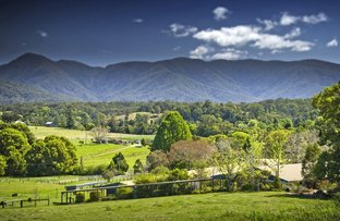 Waterfall Way, Bellingen NSW 2454
