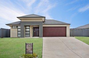 3 Hepburn Close, Rutherford NSW 2320