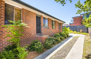 Picture of 1/10 Charles Street, Queanbeyan NSW 2620