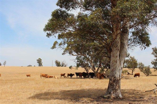 Picture of CHERRY TREE POOL WA 6395