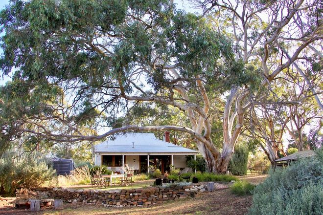Picture of 1130 PLAYFORD HIGHWAY, CYGNET RIVER SA 5223