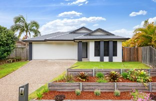 Picture of 3 Haughton Street, Pacific Pines QLD 4211