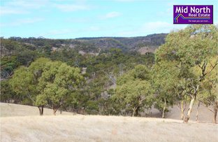 Picture of Lot 7 Spring Gully Road, Clare SA 5453
