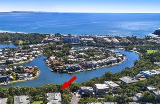 Picture of 8/2 Serenity Close, Noosa Heads QLD 4567