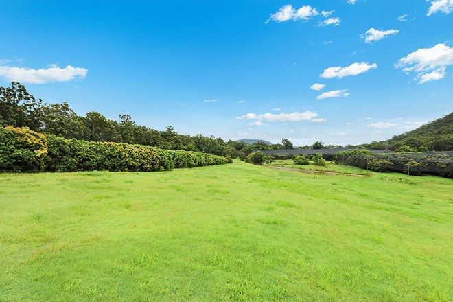 Picture of Lot 2 Lychee Parklands, BEERWAH QLD 4519