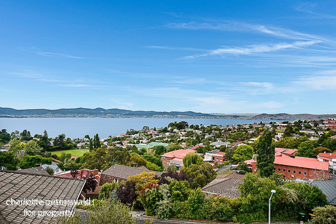 59 Fisher Avenue, Sandy Bay TAS 7005, Image 1