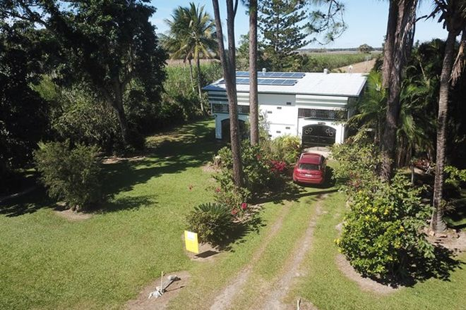 Picture of 464 Sunnybank Road, BRAEMEADOWS QLD 4850