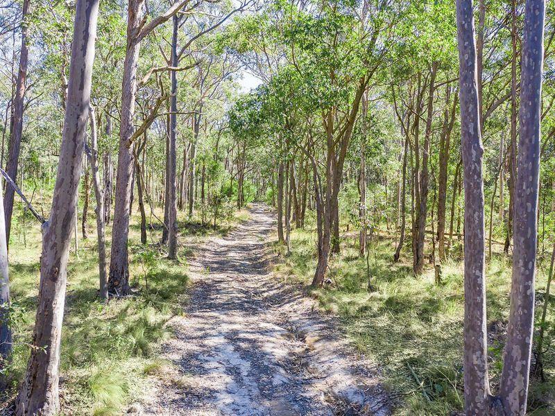 584 Moonabung Road, Vacy NSW 2421, Image 1
