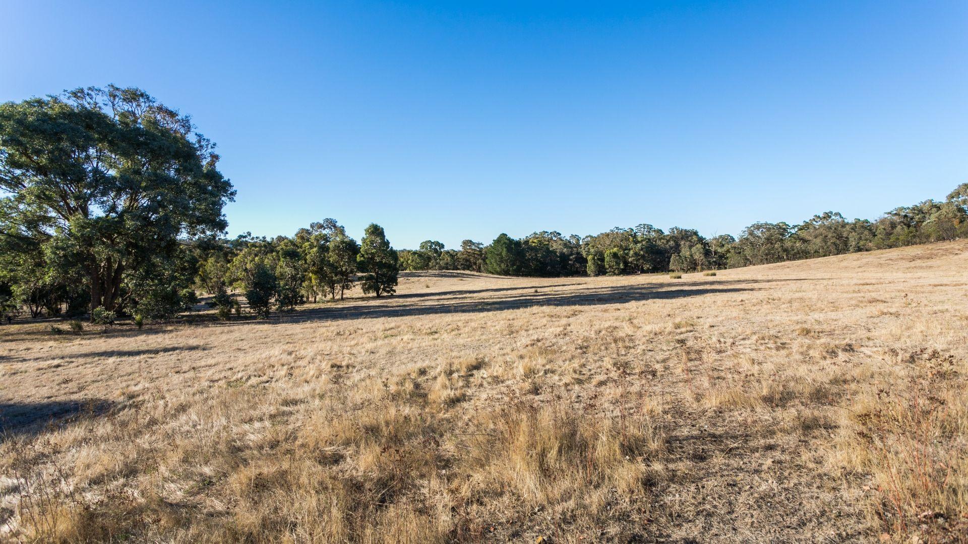 147 Yandoit Township Road, Yandoit VIC 3461, Image 1