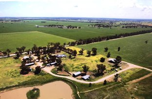 Picture of 1723 Wargin Road, West Wyalong NSW 2671