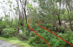 Picture of Lot 2 Thornton Peak Drive, Daintree QLD 4873