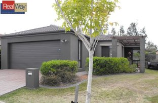 Picture of 38 Macaranga Crescent, Carseldine QLD 4034
