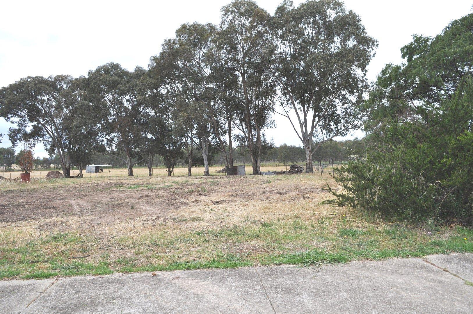 Lot 67 Pinkstone Avenue, Cootamundra NSW 2590, Image 0