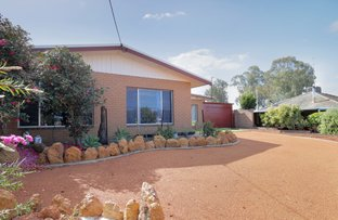 Picture of 9 Tamplin Street, Northam WA 6401