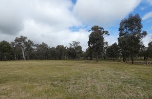 Picture of Lot 2 Bendick Murrell Road, Bendick Murrell NSW 2803