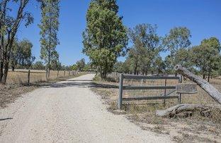 Picture of 323 Racecourse Road, Chinchilla QLD 4413