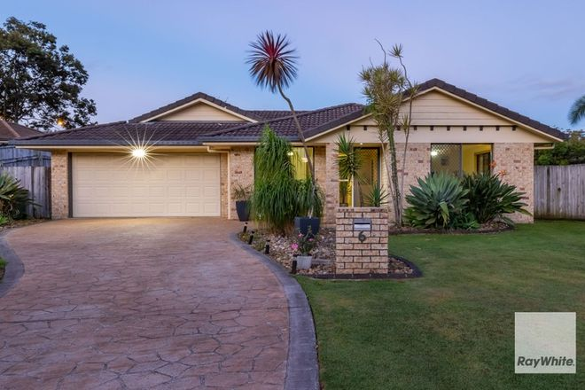 Picture of 6 Scampi Place, REDLAND BAY QLD 4165