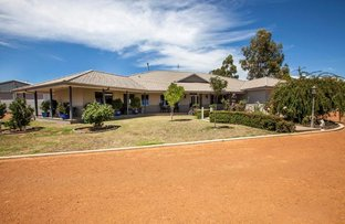 Picture of 17 Silver Birch Heights, Kangaroo Gully WA 6255