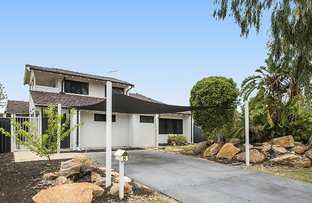 Picture of 8 Red Wattle Place, Churchlands WA 6018
