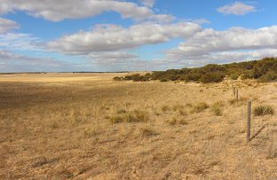 Picture of Allot 2 Ridgway Road, Lameroo SA 5302