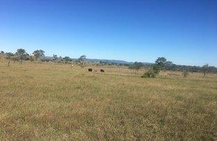 Picture of 718 Laurel Bank Road, Alton Downs QLD 4702