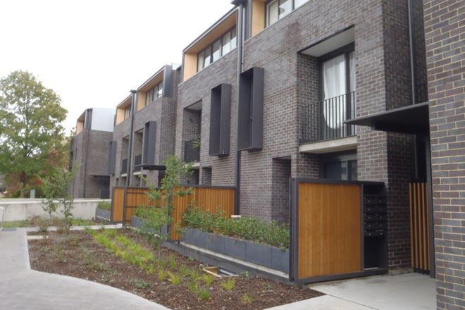 Picture of 18/50 Lowanna Street, BRADDON ACT 2612