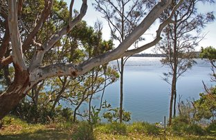 41 Camden Head Road, Dunbogan NSW 2443