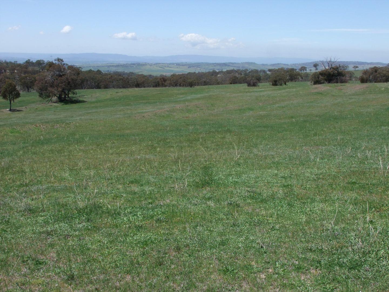 1781 Mitchell Highway, Bathurst NSW 2795, Image 1
