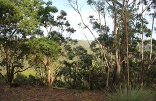 Picture of 46 Edward pde , Wentworth Falls NSW 2782