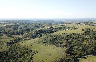 Picture of Razorback NSW 2571