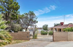 Picture of 13 Chaucer Close, Spearwood WA 6163