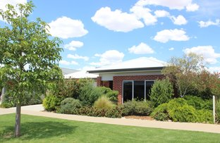 Picture of 37 Boree Drive, Swan Hill VIC 3585