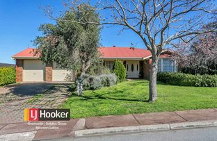 Picture of 17 Tongariro Street, Greenwith SA 5125