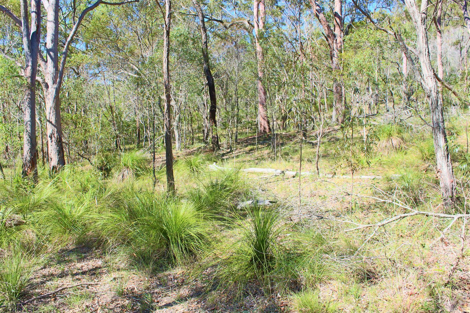 Bills Road, Agnes Water QLD 4677, Image 1