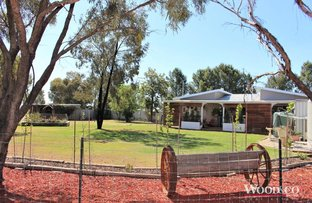 Picture of 1417 Murray Valley Highway, Beverford VIC 3590
