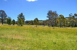 Lot 10 Old Tolmie Rd, Tolmie VIC 3723