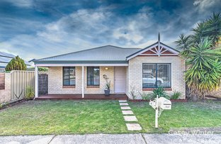 Picture of 16 Moorlinch Street, Butler WA 6036