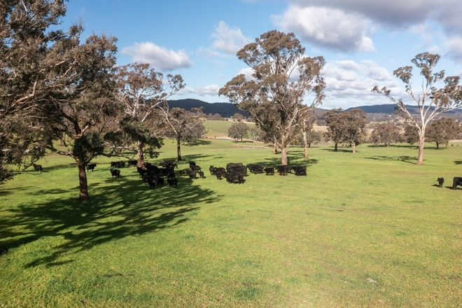Picture of 1054 Middle Arm Road, GOULBURN NSW 2580