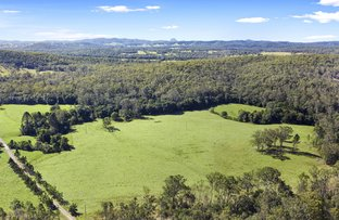 Picture of Proposed Lot Belli Oak Tree Road, Belli Park QLD 4562