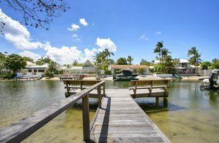 Picture of 20 Mossman Court, Noosa Heads QLD 4567
