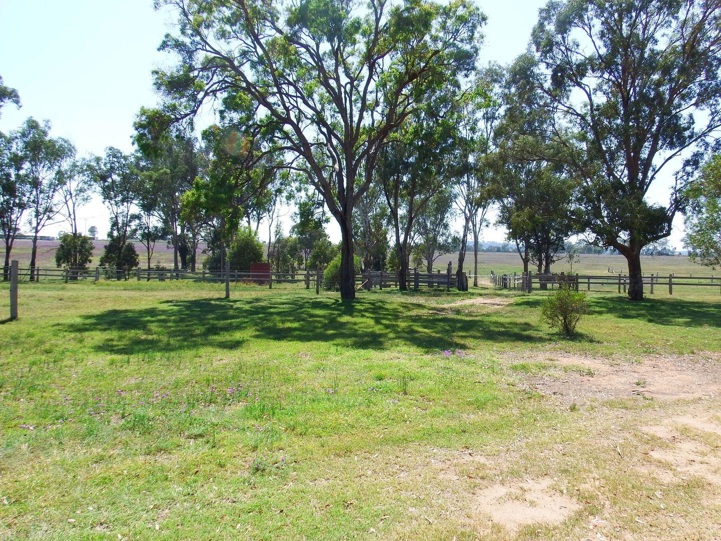 231 Washpool Rd, Rosenthal Heights QLD 4370, Image 1